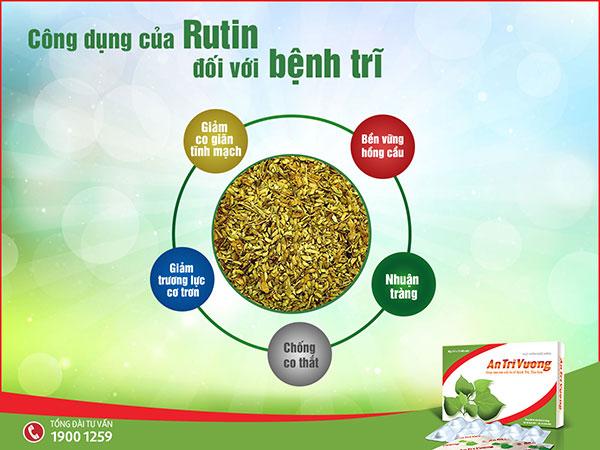 Công dụng của Rutin trong việc hỗ trợ điều trị bệnh trĩ